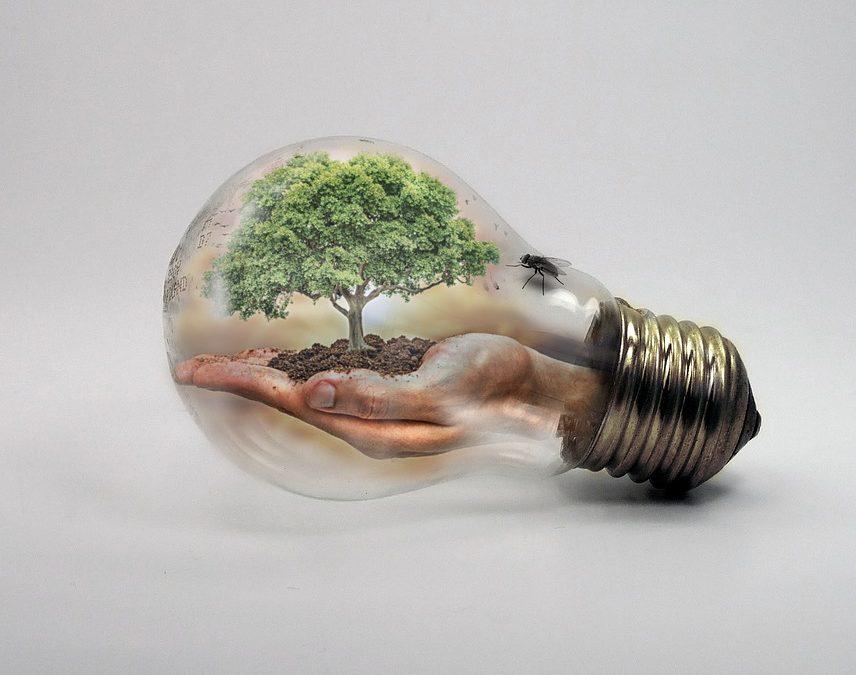 Il PNIEC, il Piano Nazionale Integrato per l'Energia e il Clima 2030
